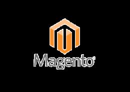 Magento ERP System